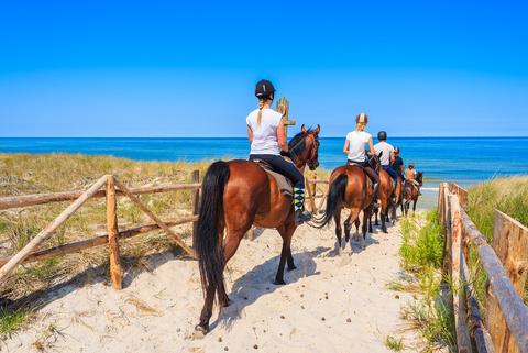 Reitausflug einer jungen Familie an der Ostseeküste